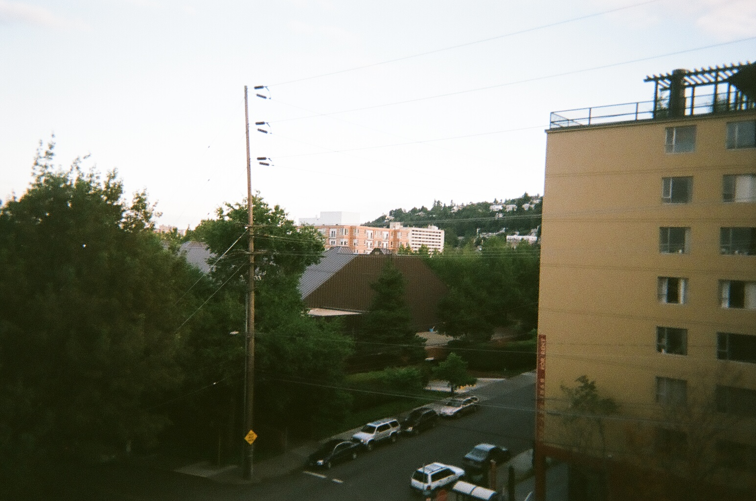 The view outside my window